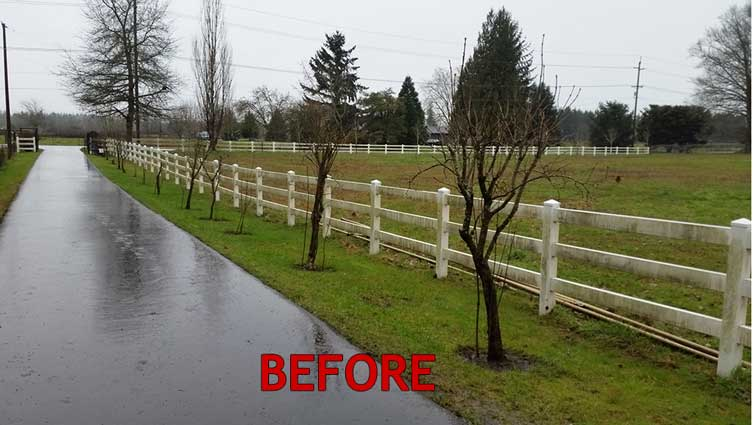 fence-before