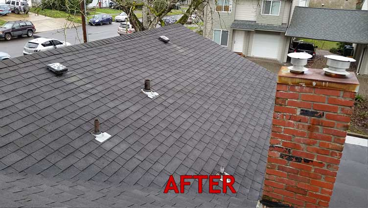roof-after